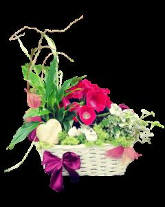 Aranjament flori naturale, cod AF25