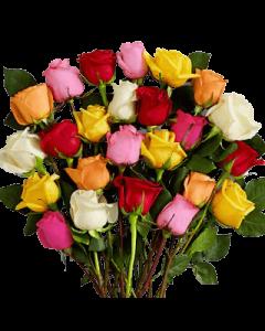 Trandafir, cod FF02